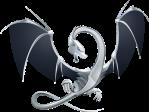 dragon_llvm